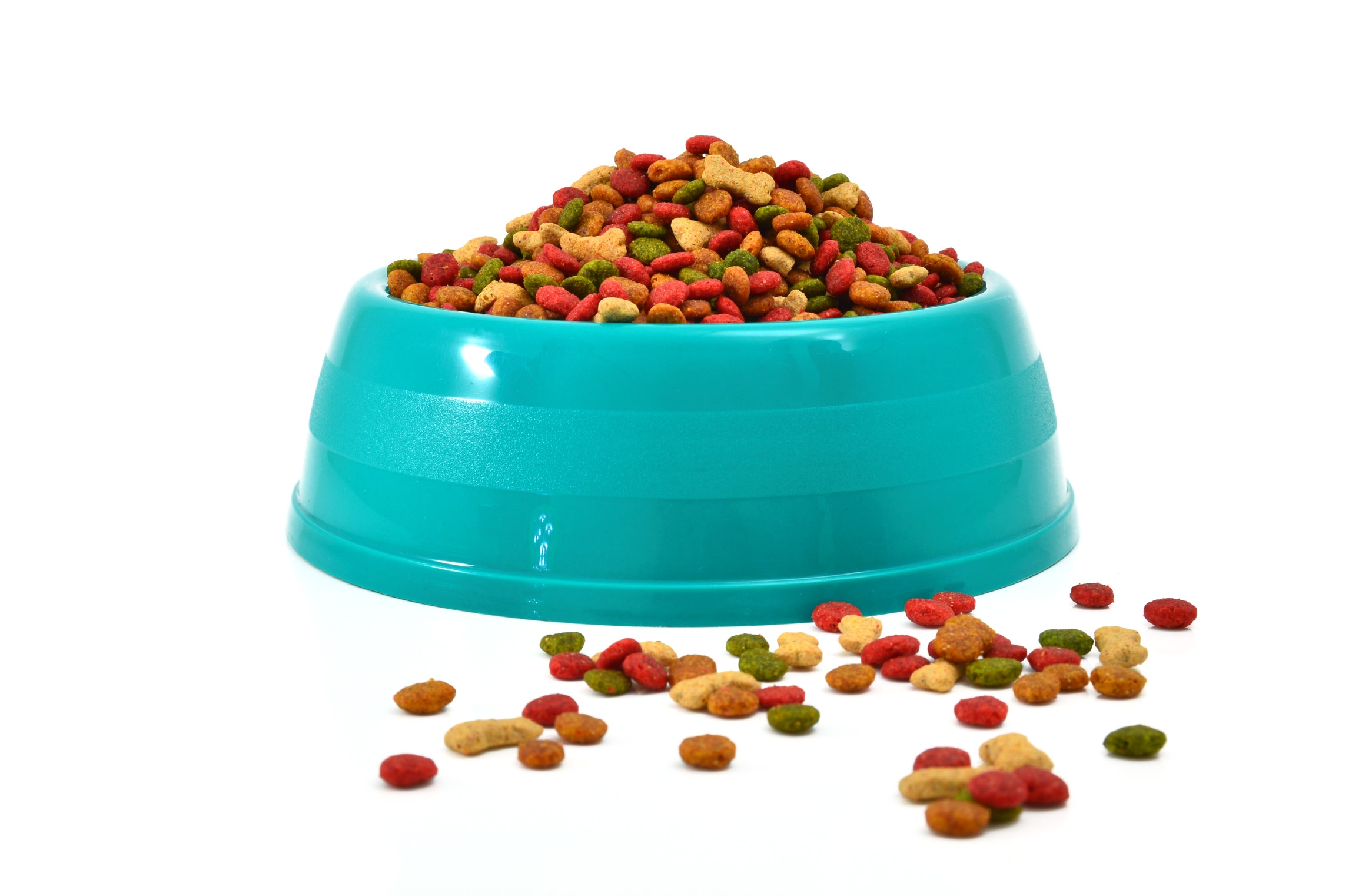 Low And Easy Dog Food