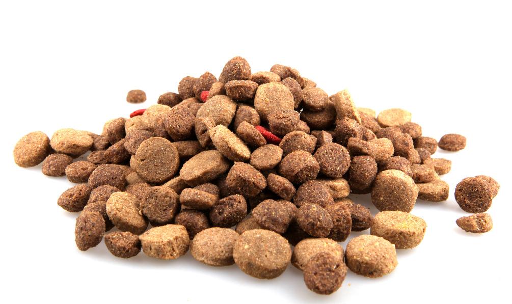 Human Grade Dry Dog Food Brands