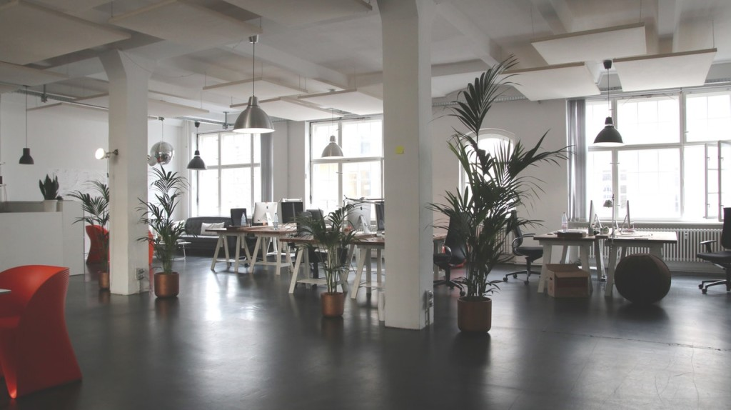 5 Ways to Fix the Bug Problem in Your Office